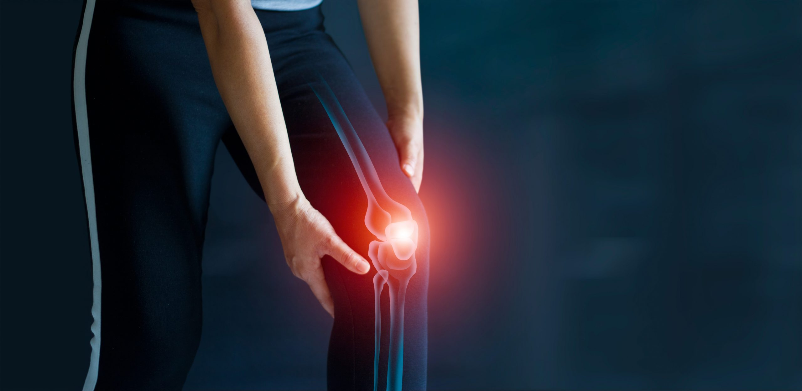 Top 10 Leg Exercises For Bad Knees
